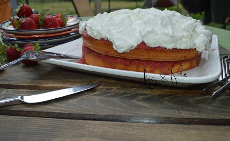 Sponge Cake with Strawberries & Rhubarb (11) WM